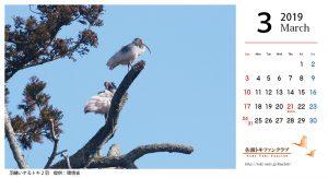 トキファンカレンダー