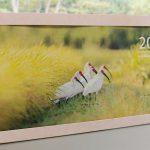 佐渡田んぼのポストカードカレンダー2021