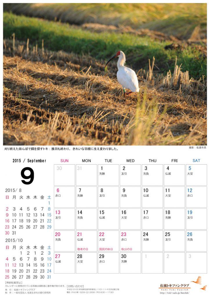 トキカレンダー