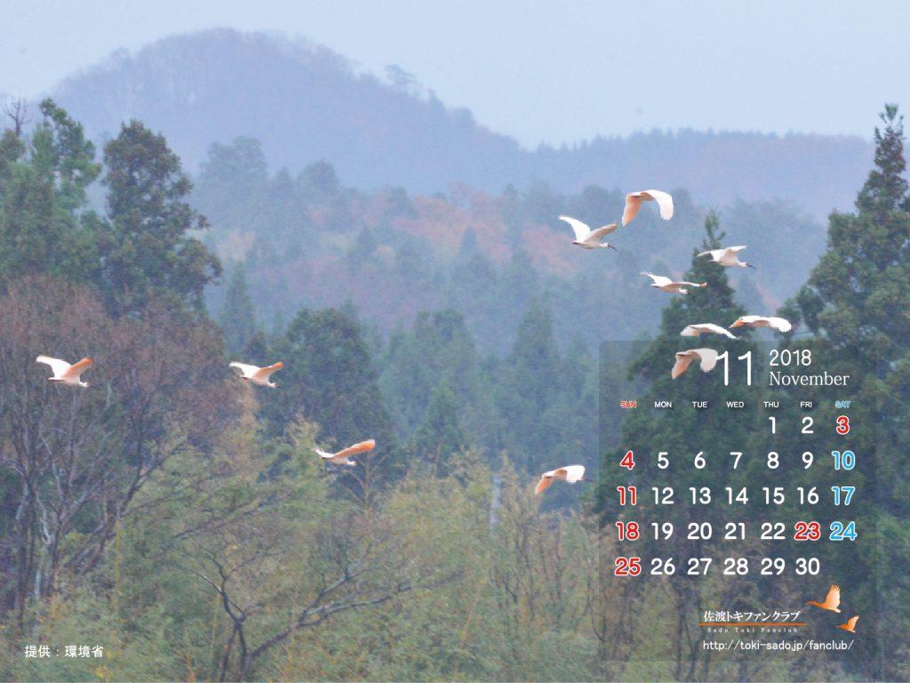 トキデスクトップカレンダー