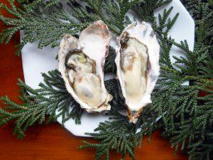 加茂湖の牡蠣