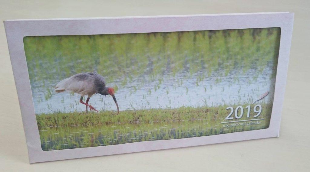 トキポストカードカレンダー2019